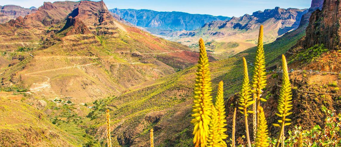 Wandern auf Gran Canaria Spanien