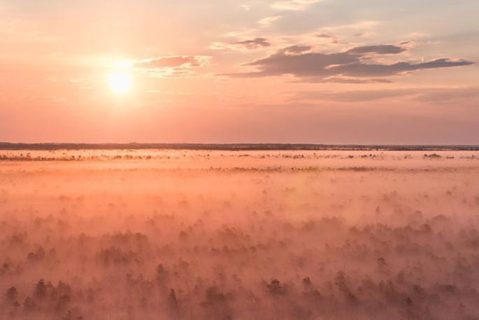 Wandern in Estland durch unberührte Natur Estland