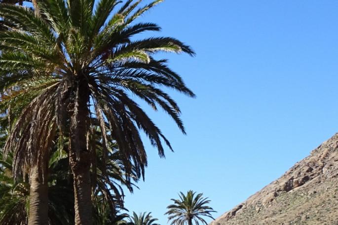 Wandern auf den Kanaren - Fuerteventura Spanien