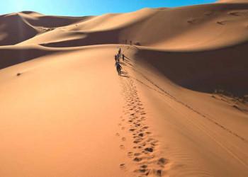 Hoch hinaus in der Erg Chebbi Wüste