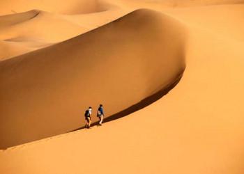 Wüstenwanderung bei Khongoriin Els