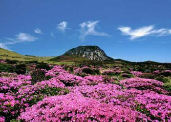 Mount Hallasan auf Jeju