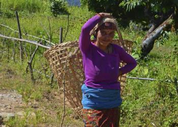 Einheimische bei der Feldarbeit