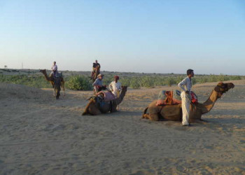 Kameltour in der Wüste Thar
