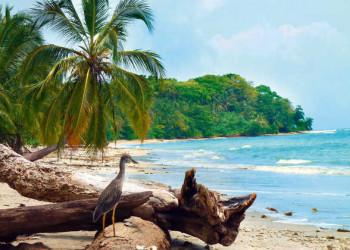 Am Strand im Cahuita