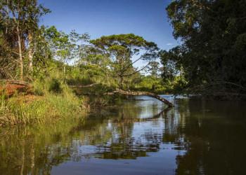 Flussidylle bei der Laguna del Lagarto Lodge