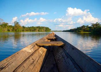 Im Amazonas bei Manaus