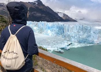 Kalbender Perito Moreno