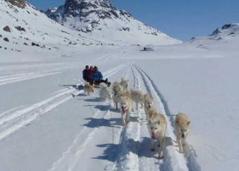Hundeschlittentour Grönland