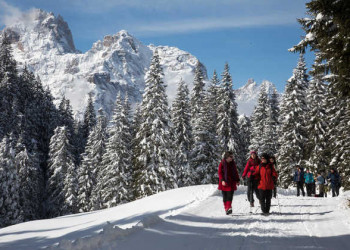 Winterwandern in den Alpen