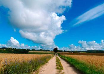 Wanderweg in den Masuren