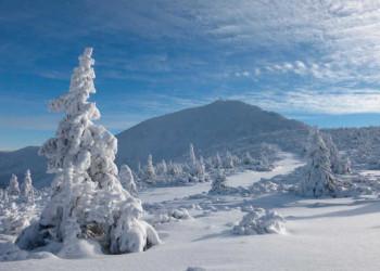 Schneekoppe
