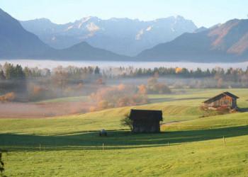 Mooslandschaft im Herbst