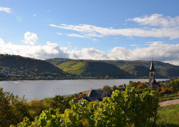 Herbsteindrücke im Rheingau
