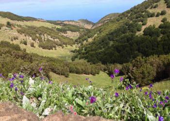 Region um Las Montañetas im Norden