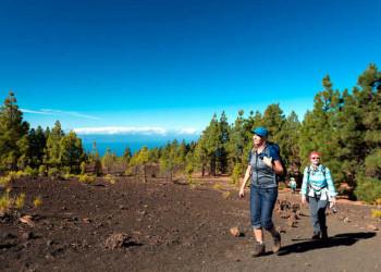 Wandern im Teide