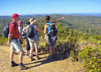 Wanderung in der Serra de Monchique