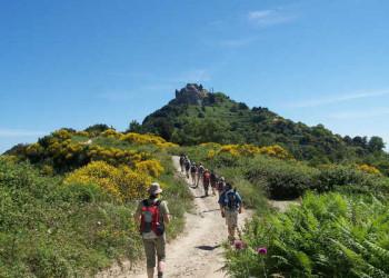 Wanderung am Monte Epomeo, Gipfel in Sicht