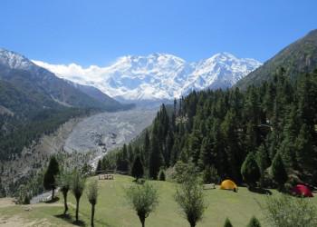 Märchenwiese und Nanga Parbat