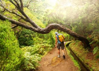 Madeira Levada Wanderer | © shutterstock_177217106