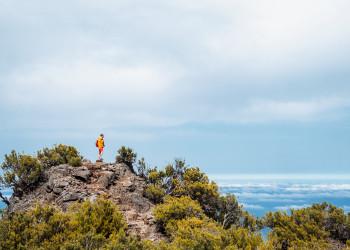 Madeira Wanderer | © shutterstock_1702359598