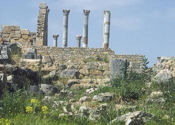 Szene in der römischen Ruinenstadt Volubilis