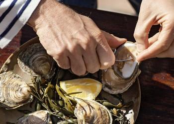 Austern probieren auf der Studienreise Bretagne