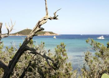 Meer in Korsika