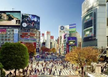 Shibuya & Co.: Tokios Zebrastreifen sind legendär ...