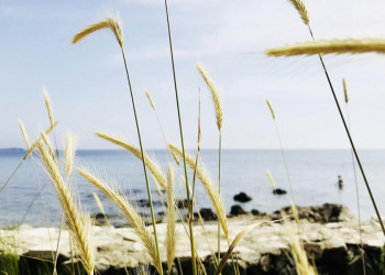 Küstenimpressionen in Kroatien