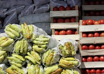 Frisches Obst auf einem Markt in Albanien