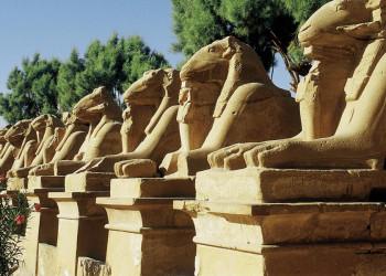 Sphingen in Karnak