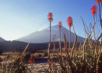 Der Vulkan Popocatépetl in Mexiko