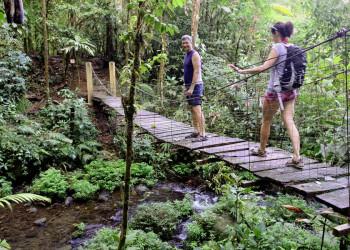 Wanderung durch den Regenwald in Costa Rica