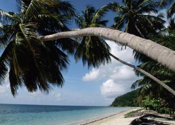 Karibikidylle pur