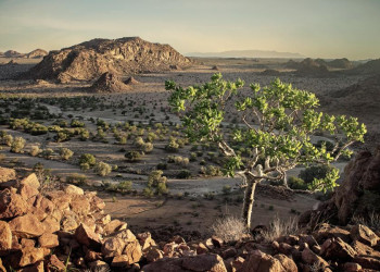 Damaraland nahe Twyfelfontein