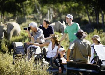 Mit Studiosus auf Safari im offenen Geländewagen im Südlichen Afrika