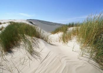 Sanddünen an Polens Ostseeküste