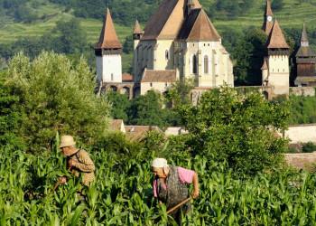 Biertan, Kirchenburg, Siebenbürgen, Rumänien