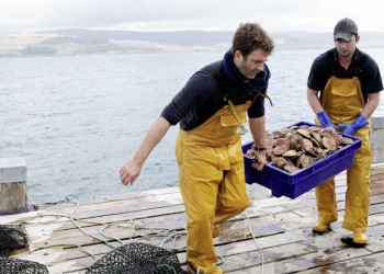 Frische Meeresfrüchte - in Edinburgh kein Problem!