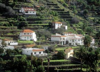Terrassierte Felder im Valle Gran Rey auf Gomera
