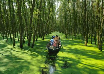 Entdeckertrip durch das Mekongdelta in Vietnam