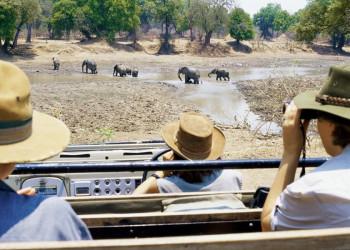 Auf Safari im Krügerpark