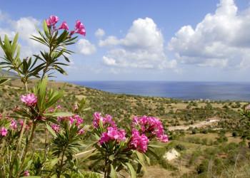 Die sanfte Berglandschaft der Akamas-Halbinsel auf Zypern