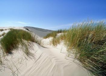 Sanddünen an der Ostsee in Polen