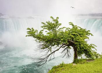 Die Niagarafälle in Kanada