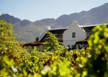 Südafrikanischer Wein, einer köstlicher als der andere