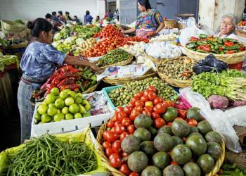 Marktstand mit Gemüse und Obst in Guatemala