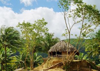 Palmgedeckte Rundhütte am Rande des Humboldt-Nationalparks auf Kuba