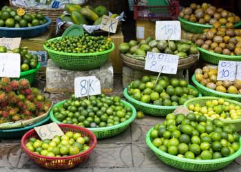 Tropische Früchte in Indochina